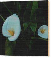 Double Calla Wood Print