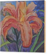 Double Lily Wood Print