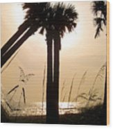 Double Palms Wood Print