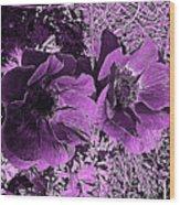Double Poppies In Purple Wood Print