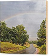 Double Rainbow At Devils Tower Wood Print