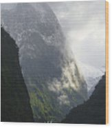 Doubtful Sound Wood Print by Barry Culling