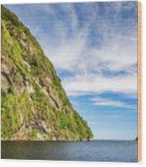 Doubtful Sound Opening To Tasman Sea Wood Print