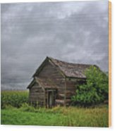 Dougherty Country 2 Wood Print