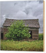 Dougherty Country Wood Print
