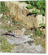 Dove  #9225 Wood Print