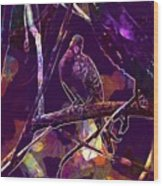 Dove Birds Animals Nature  Wood Print