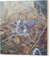 Dove Nesting Wood Print
