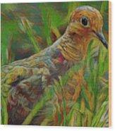 Dove Painterly Wood Print