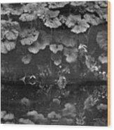 Dovedale Wood Print