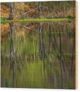 Down At Pecks Pond Wood Print