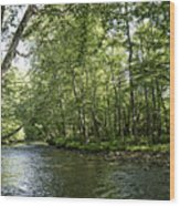 Down Beside Where The Waters Flow Wood Print