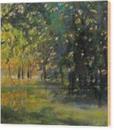 Down By The Lake Wood Print