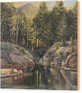 Down By The Pemigewasset River Wood Print