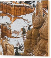 Down Into The Canyon Wood Print