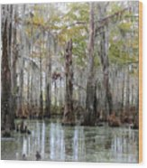 Down On The Bayou - Digital Painting Wood Print by Carol Groenen