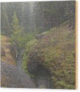 Down Pour At Boulder Cave Wood Print