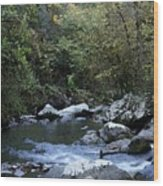 Down Stream Wood Print