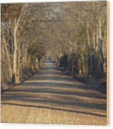Down The Gravel Road Wood Print