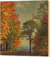 Down The Mountain Wood Print