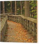 Down The Path Wood Print