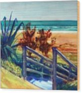 Down The Stairs To The Beach Wood Print