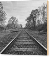 Down The Tracks Wood Print