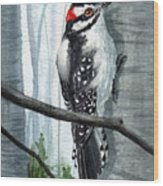 Downey Woodpecker Wood Print