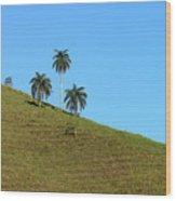 Downhill Wood Print
