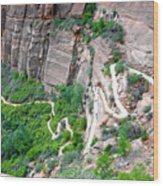 Downhill Switchbacks From Angels Landing Wood Print