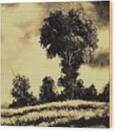 A Spring Shower Wood Print