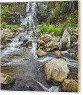 Downstream From Chittenango Falls Wood Print