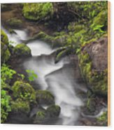 Downstream From The Waterfalls Wood Print