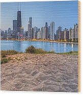 Downtown Chicago From North Beach Wood Print