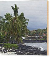 Downtown Kona Wood Print