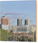 Downtown Ottawa In Distance Wood Print by Richard Mitchell