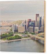 Downtown Pittsburgh Pennsylvania Wood Print