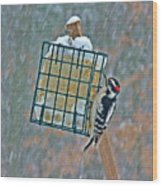 Downy Woodpecker In The Snow Wood Print