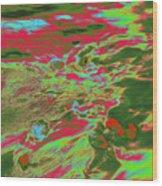 Dp Stone Impressions 12 Wood Print