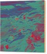 Dp Stone Impressions 7 Wood Print