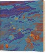 Dp Stone Impressions 8 Wood Print