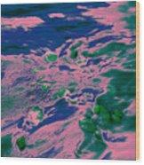 Dp Stone Impressions 9 Wood Print