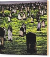 Dracula Cemetery In Whitby England Wood Print by Jen White