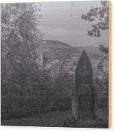 Dracula's Hill Wood Print