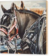 Draft Mules Wood Print by Nadi Spencer