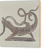 Dragon And Serpent Weather Vane Wood Print