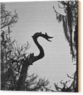 Dragon Shaped Tree Wood Print