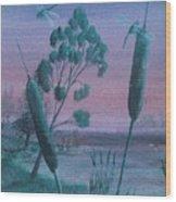 Dragonflies In The Dusk Wood Print by Robert Meszaros