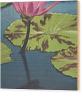 Dragonfly 2 Wood Print