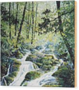 Dragonfly Creek Wood Print